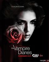 Дневник торент через 3 вампира